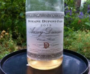 rosé_Dupont